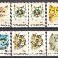 Rase de pisici, 1993, perechi, nr. lista 1315, MNH