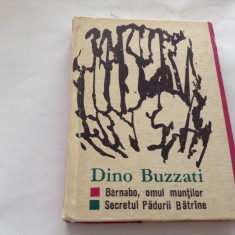 Dino Buzzati - Barnabo, omul muntilor -Secretul padurii batrane