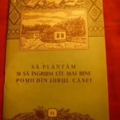 V.Sonea, I.Militiu -Sa plantam si sa ingrijim pomii din jurul casei 1956+ 1 plan - Carte Hobby Gradinarit