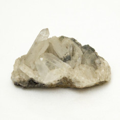 Cuart - Fosila roca