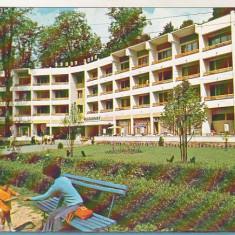 Bnk cp Baile Moneasa - Hotel Parc - necirculata - Carte Postala Crisana dupa 1918, Printata