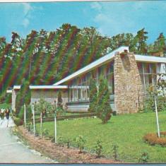 Bnk cp Baile Moneasa - Cantina restaurant - necirculata - Carte Postala Crisana dupa 1918, Printata