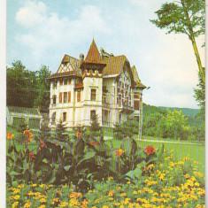 Bnk cp Baile Moneasa - Vila nr 7 - necirculata - Carte Postala Crisana dupa 1918, Printata