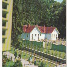 Bnk cp Baile Moneasa - Vedere - necirculata - Carte Postala Crisana dupa 1918, Printata