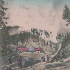 BORSA, GRANITA, EDITURA WIDER HERS, BORSA - Carte Postala Maramures dupa 1918, Necirculata, Printata