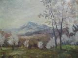 Peisaj cu pomi infloriti, pictura in ulei de P. Popescu