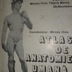 ATLAS DE ANATOMIE UMANA VOL.1 CU NUMEROASE FIGURI/AN 1983/211PAG= IFRIM