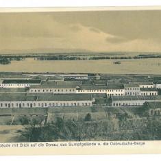 2101 - Dobrogea, SULINA, Danube - old postcard - unused - Carte Postala Dobrogea 1904-1918, Necirculata, Printata