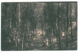 3183 - PITESTI, Park Trivale - old postcard, CENSOR - used - 1918, Circulata, Printata