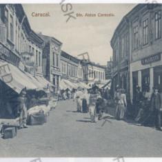 2116 - Olt, CARACAL - old postcard - unused - Carte Postala Oltenia 1904-1918, Necirculata, Printata