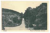 3331 - PITESTI, Park - old postcard - unused, Necirculata, Printata