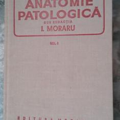 ANATOMIE PATOLOGICA - MORARU VOL 1, STARE FOARTE BUNA .
