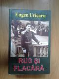 H6 Eugen Uricaru - Rug si flacara