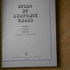 ATLAS DE ANATOMIE UMANA - 1983 - VOL. I