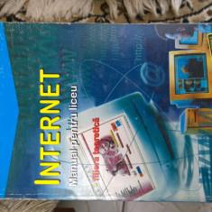 INTERNET MANUAL PENTRU LICEU - Carte despre internet