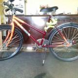 Bicileta de Dama - Bicicleta Dama Adriatica, 20 inch, 26 inch, Numar viteze: 6