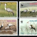 Malawi 1987 WWF, Mi #477-480 x**, pasari, MNH, cota 19 €! - Timbre straine, Natura, Nestampilat