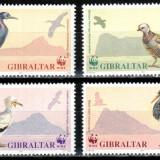 Gibraltar 1991 WWF, Mi #619-622, pasari, MNH, cota 6 € ! - Timbre straine, Natura, Nestampilat