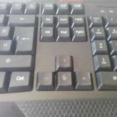 Tastatura Natec Gaming Iluminata Genesis RX33., Cu fir, USB, Tastatura iluminata