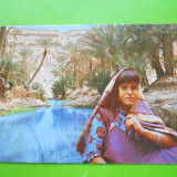 HOPCT 25033 TUNISIA / REPAUZ IN OAZA TUNISIANA -NECIRCULATA, Printata
