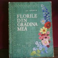 Al. Borza Florile din gradina mea, editie princeps, splendid ilustrata - Carte gradinarit
