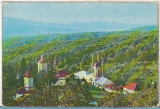 Bnk cp Manastirea Ciolanu - Buzau - Vedere generala - necirculata, Printata