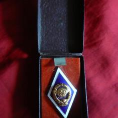 Insigna Academia Militara URSS ,metal aurit si email ,h=5cm