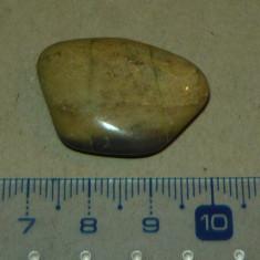Piatra semipretioasa - zodiacala - mineraloterapie - 2+1 gratis - RBK18010 - Fosila roca