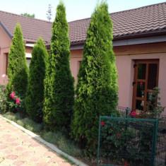 Casa de vanzare in Bacau - cartierul Nord, 130 mp, Numar camere: 6, Suprafata teren: 500