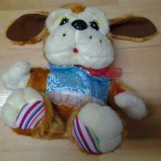 NO. 21 Dolce Puppy Altele