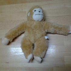 NO. 10 cimpanzeul saltaret