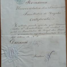 Certificat al Universitatii din Bucuresti, 1872, semnat de Primul Ministru - Diploma/Certificat