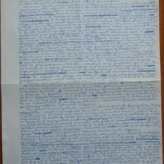 Manuscris al criticului si scriitorului Al. Piru, Istoria ieroglifica - Autograf