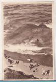 Bnk cp Vasile Roaita - Plaja - circulata 1952, Printata, Eforie