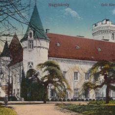 CAREII MARI, CASTELUL CONTELUI KAROLYI - Carte Postala Maramures dupa 1918, Necirculata, Printata
