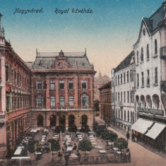 ORADEA, NAGYVARAD, CAFENEA REGALA, MAGAZINE - Carte Postala Crisana dupa 1918, Necirculata, Printata