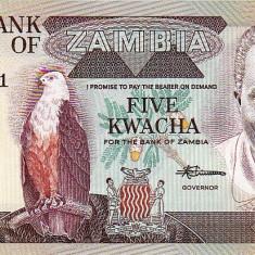 5 K Zambia - bancnota africa