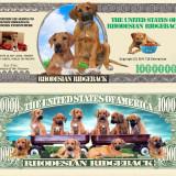 !!! SUA = FANTASY NOTE (TJ6) = RIDGEBACK RHODEZIAN - 2011 - UNC, America de Nord
