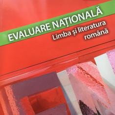 EVALUARE NATIONALA. LIMBA SI LITERATURA ROMANA - F. Ionita, M. Stan, M. Lascar - Carte Teste Nationale, Art