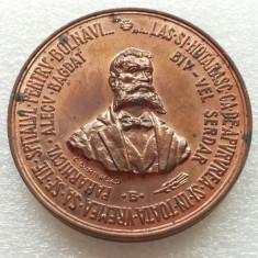 RAMNICU SARAT-MEDALIA SPITALULUI DIN RAMNICU SARAT-1994 - Medalii Romania