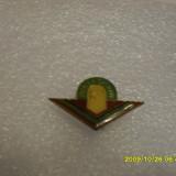 insigna Pionier sportiv