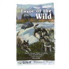 2 X Taste Of The Wild Pacific Stream Puppy 13 kg - Mancare caini