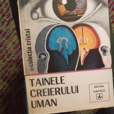 TAINA CREIERULUI UMAN - Carte Psihiatrie