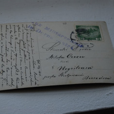 Bukowina circulatie Negrileasa, Cenzura Dorna - Carte Postala Bucovina 1904-1918, Circulata, Printata