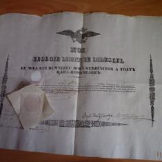 GEORGE DIMITRIE BIBESCU, DOCUMENT SEMNAT OLOGRAF DE DOMNITOR