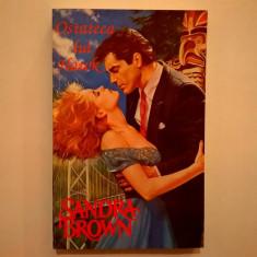 Sandra Brown – Ostateca lui Hawk - Roman dragoste