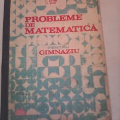 CULEGERE PROBLEME DE MATEMATICA PENTRU GIMNAZIU I.PETRICA 1985 - Culegere Matematica