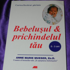 Bebelusul si prichindelul tau 0-3 ani Anne Marie Mueser (f0062