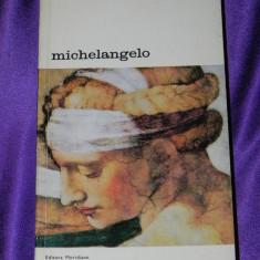 Michelangelo - Charles de Tolnay colectia biblioteca de arta (f0147
