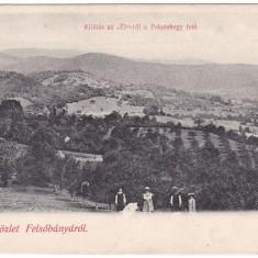 #1966- Romania, salutari Felsobanya, Baia Sprie, c.p. necirc. 1900: Panorama - Carte Postala Maramures pana la 1904, Necirculata, Fotografie